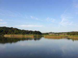 8月朝の景色