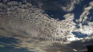 うろこ雲を見上げて