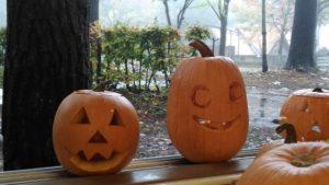 ハロウィン  かぼちゃと遊ぶ